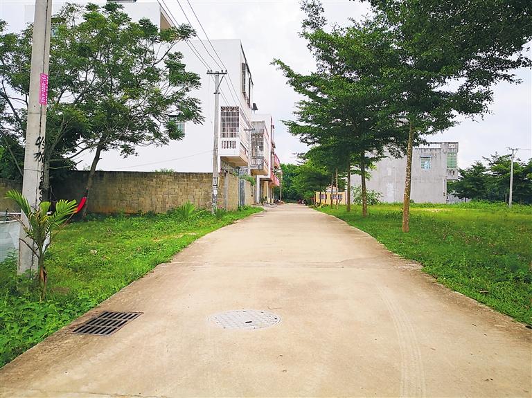 改善人居环境红榜   屯昌红花村:清扫垃圾成习惯 村庄整洁又美丽